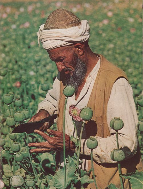 Peshawar National Geographic January 1977,  J Bruce Baumann.