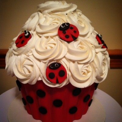 lady bug smash cake