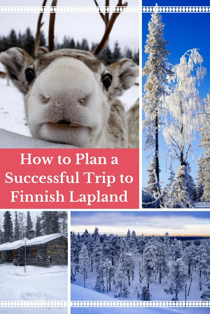 How to Plan a Successful Trip to Finnish Lapland | Travel Finland | Arctic Travel | Travel Europe