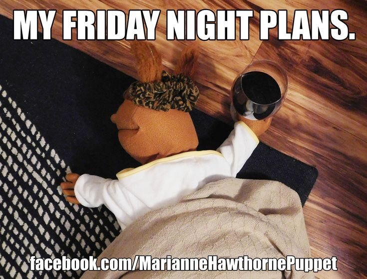 Funny Friday Night Meme : My friday night plans wine meme funny comedy single lonely
