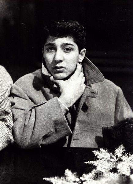 George Hamilton (actor)
