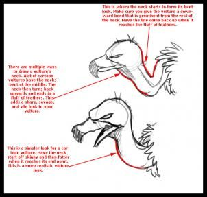 how to draw a cartoon vulture step 1