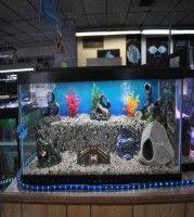 Cool Fish Tank Decoration Ideas