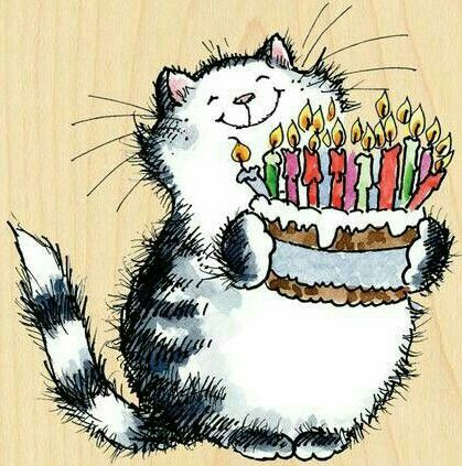 fat cat with birthday cake