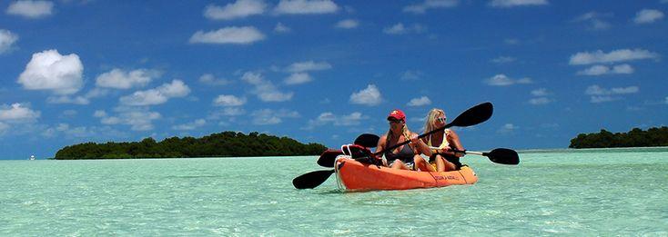 Florida Keys Kayaks Canoes Eco Tours