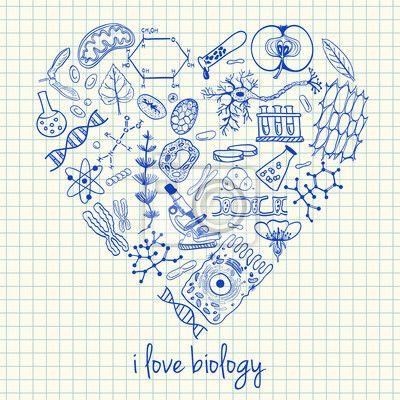 Wall mural biology drawings in heart shape - biology • PIXERSIZE.com