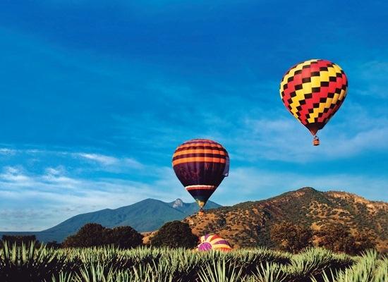 Ruta del Tequila y globos aerostáticos.  Yo quiero ir...