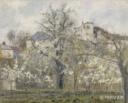 카미유 피사로 '봄, 꽃핀 자두 나무' 1877년 오르세 미술관 인상주의 영국 시절 영향을 받았던 터너를 연상시키는 화풍을 선보이고 있다. 거목을 화면 한가운데 배치한 대담한 구성을 보이는 이 그림에서, 이 대담함은 정확한 삼각형의 나무 형태로 상쇄된다. 나무 뒤로는 하늘색의 파란 지붕이 덮인 건물들이 들어서 있다. 화면 밑에 수평으로 깔린 초록색의 채마밭은 묵직한 색감으로 그림에 안정감을 부여한다. 봄의 분위기는 흐드러지게 핀 흰색의 작은 꽃봉오리들로 확연하게 드러난다.