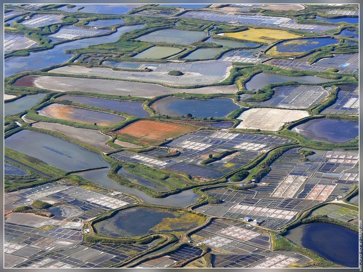 Explore the salt marshes of Guerande