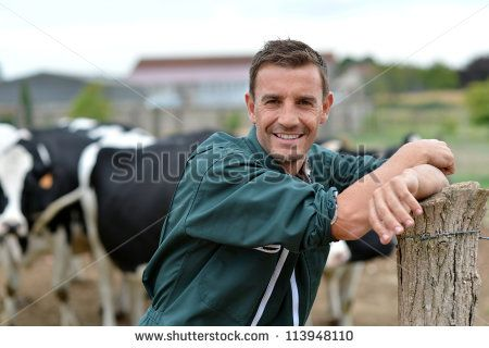 Herdsman standing in front of cattle in farm - stock photo