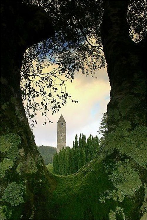 """Tree Portal, Glendalough, Ireland. Glendalough or Glendaloch; Irish: Gleann Dá Loch, meaning """"glen of two lakes"""") is a glacial valley in County Wicklow, Ireland. It is renowned for its Early Medieval monastic settlement founded in the 6th century by St Kevin, a hermit priest, and partly destroyed in 1398 by English troops."""