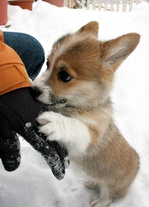 Lets go inside I'm cold!!