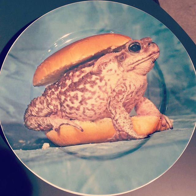 Ein Burger der anderen Art #burger #fun #plate #geschirr #geschirrliebe #deko #teller #kröte