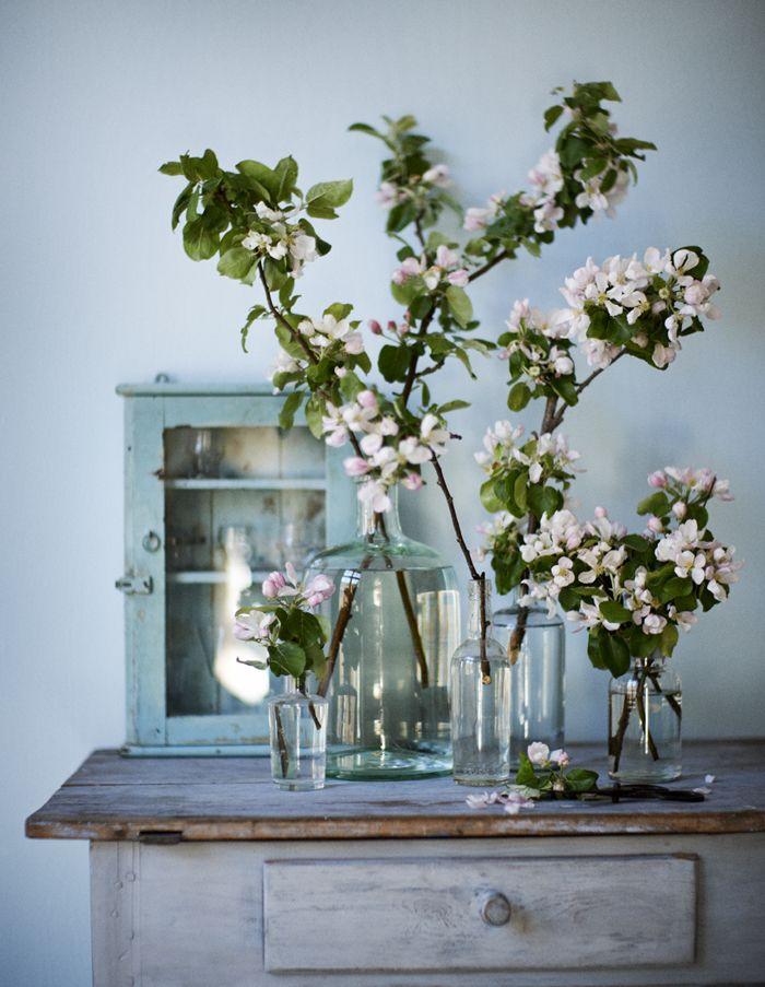 Ljuvliga äppelblom! Arrangera äppelblomskvistar i udda glasflaskor. Litet skåp med vitrin, Raja.