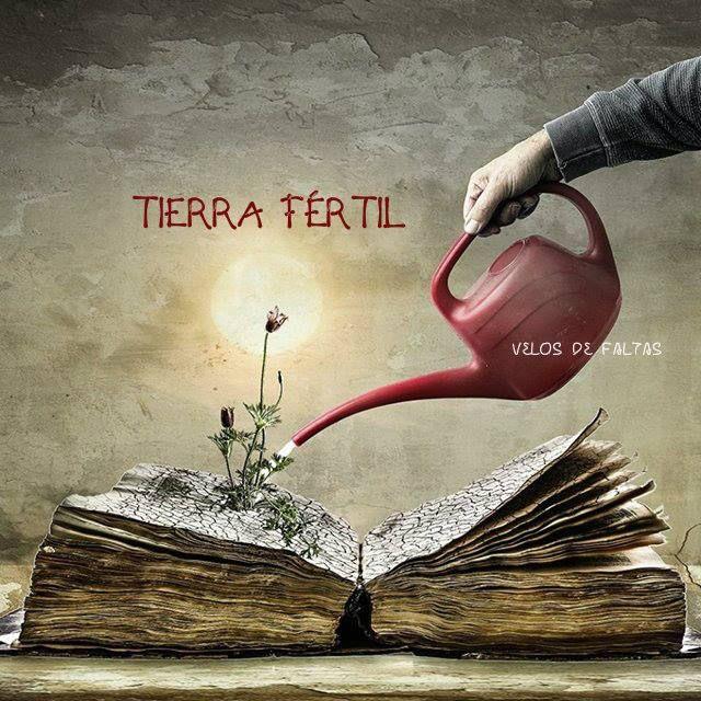 Los libros *