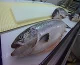 Mannin Bay Salmon, clifden