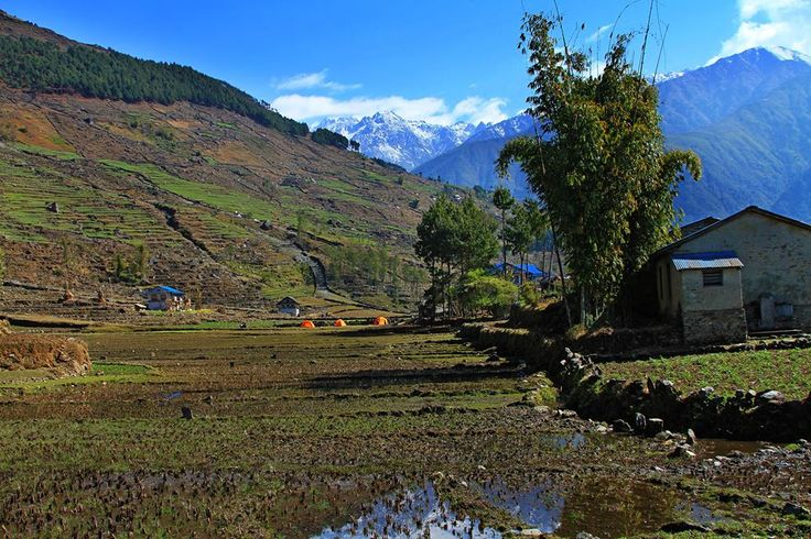 """A deep relationship with nature and craft- this what makes Chheskam special. A village tucked away under the massive Mera Peak range famous for its allo """"stinging nettle"""" fibre production."""
