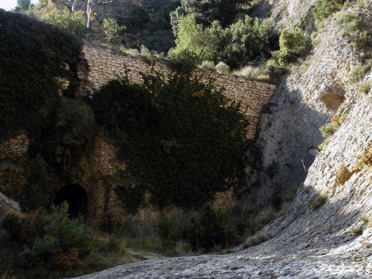 Alicante a pie: 5 RUTAS DE SENDERISMO PARA NIÑOS