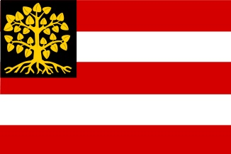 Flag 's-Hertogenbosch, the Netherlands
