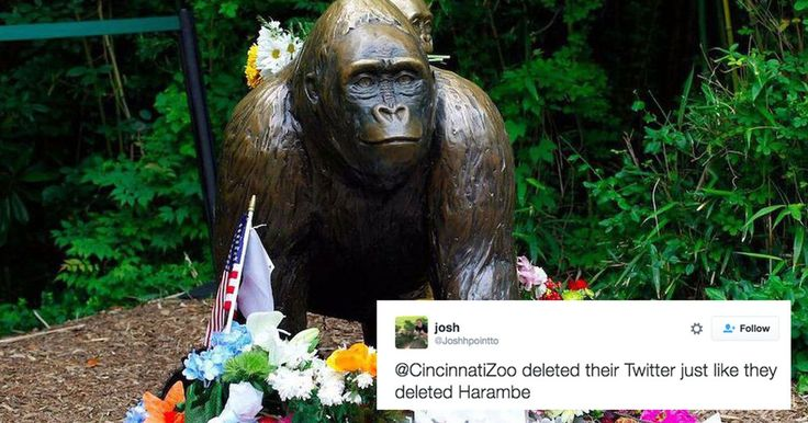 Cincinnati Zoo has deleted its social media accounts after being pestered by…
