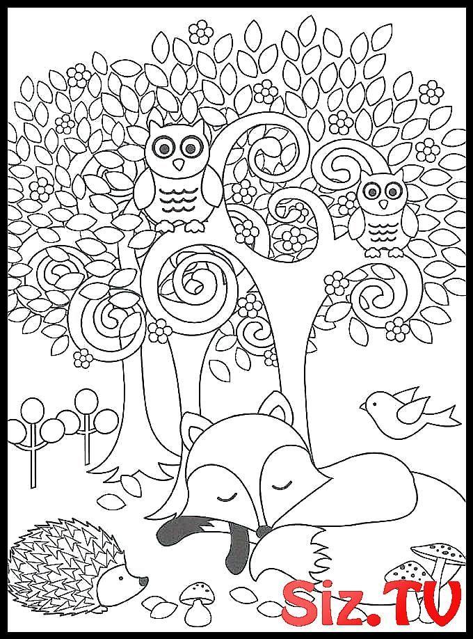 Woodland Animals Coloring Pages Woodland Animals C Animals