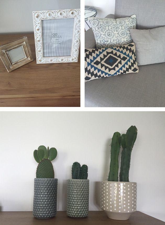 5vc_cactus