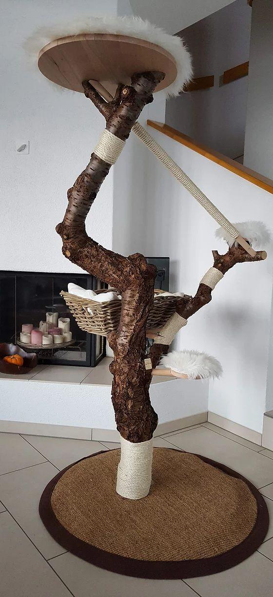 Edler Naturkratzbaum, Unikat, unbehandelt, Tiergerecht, Katzenbaum, Einzelanfertigung. Schweiz. Haben Sie einen speziellen Wunsch?