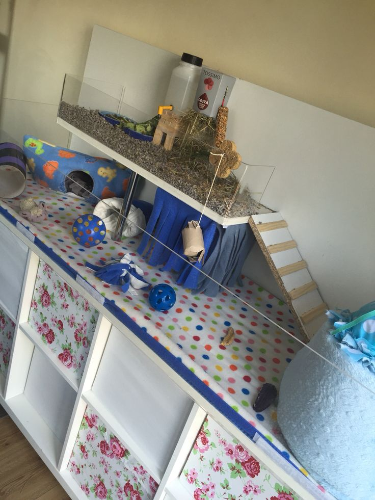 31 best images about diy guinea pig dresser on pinterest for Diy guinea pig things