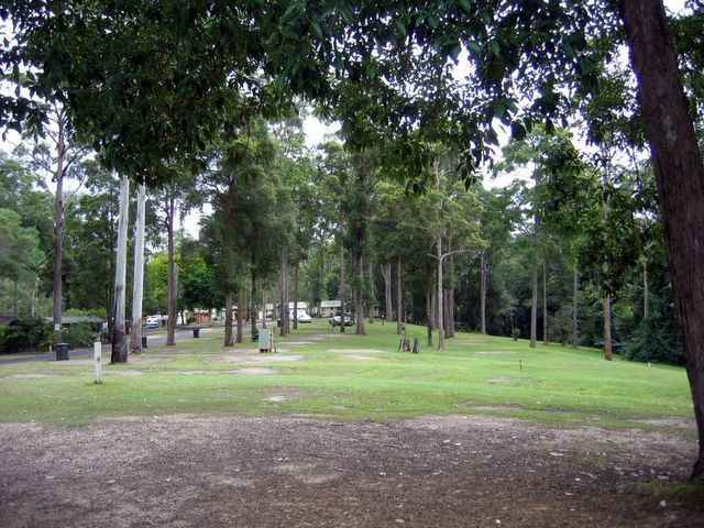 BIG4 Forest Glen Holiday Resort - Forest Glen: Lots of open space in a beautiful bushland setting