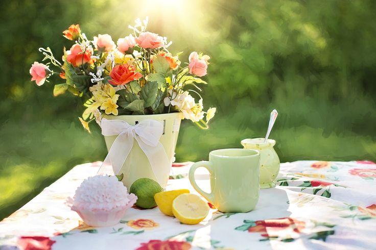 여름 정물화, 정원, 야외 활동, 냄비에 꽃, 여름 테라스