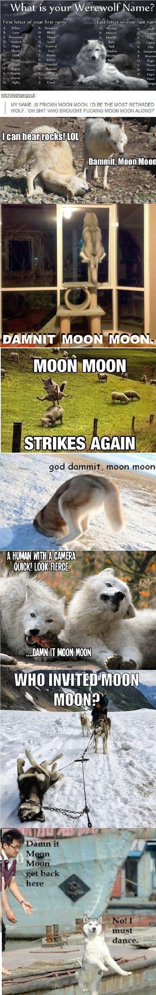 Moon Moon I LOVE THIS