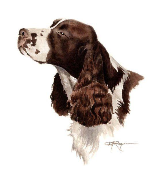 watercolor springer spaniel   SPRINGER SPANIEL Dog Watercolor Painting ART Print Signed by Artist DJ ...