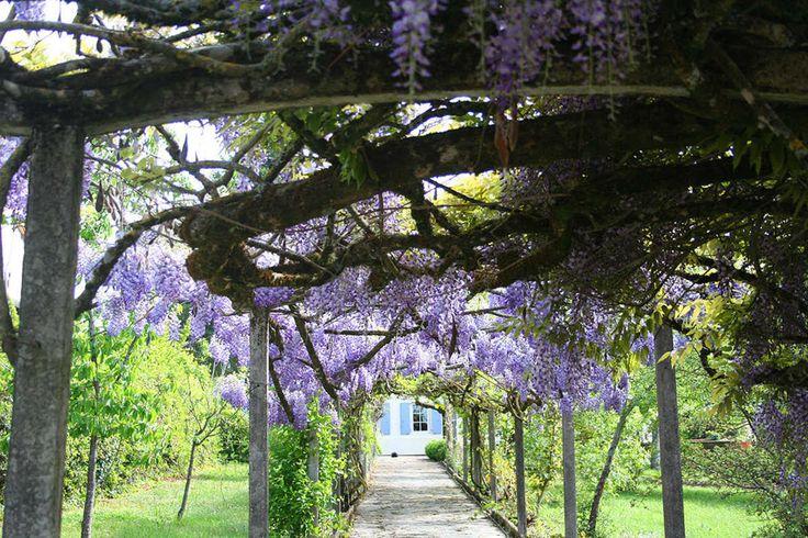 Villa in  Mirandol-Bourgnounac,  South West France ,- 2153579