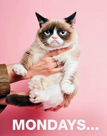 Happy Monday from Grumpy Cat haha!