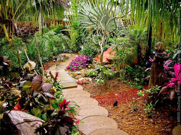 Florida Landscaping Ideas For Backyard simple florida backyard landscaping in fresh home interior design with florida backyard landscaping Our Beautiful Tropical Backyard In South Florida Httpzeezoeycomblog Florida Landscapingflorida Gardeningbackyard Landscapinglandscaping Ideasbackyard