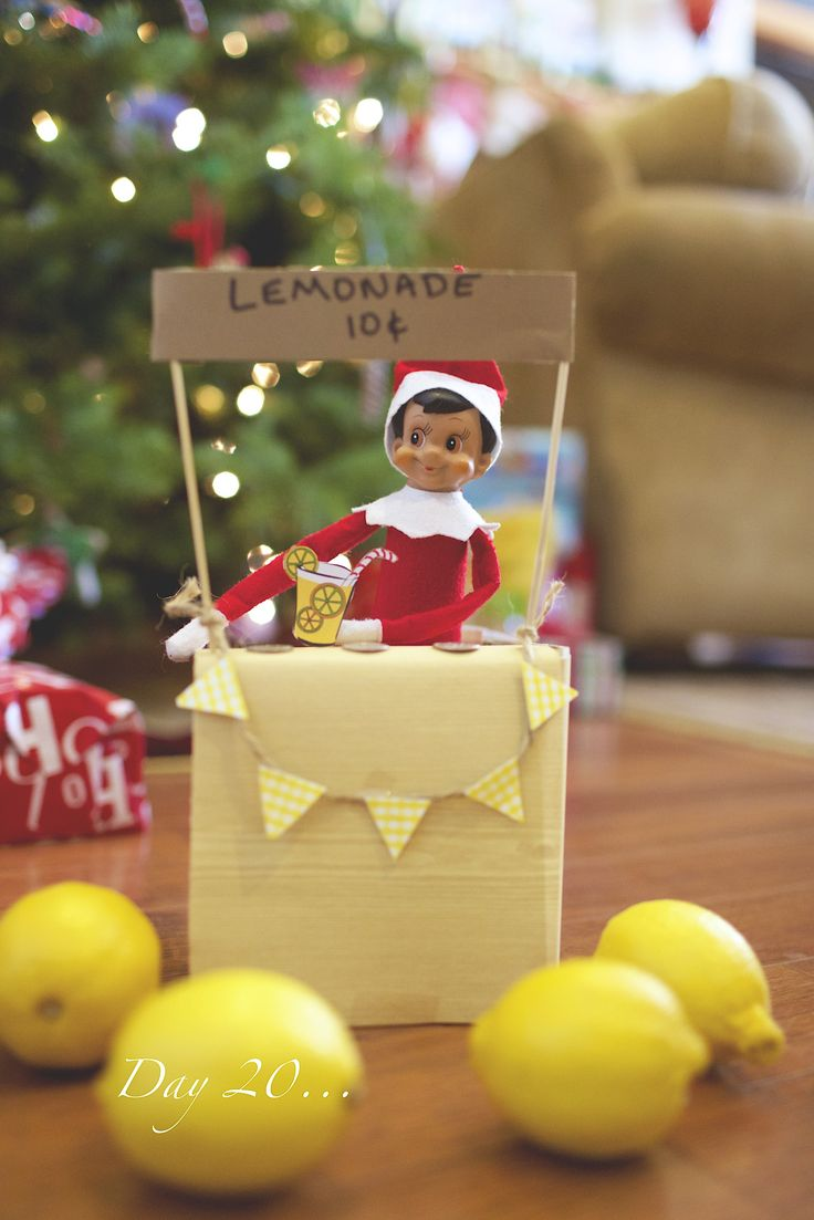 Elf On The Shelf  Day 20 - Nicki the elf was feeling thirsty as well as entreprenurial. He built a lemonade stand!