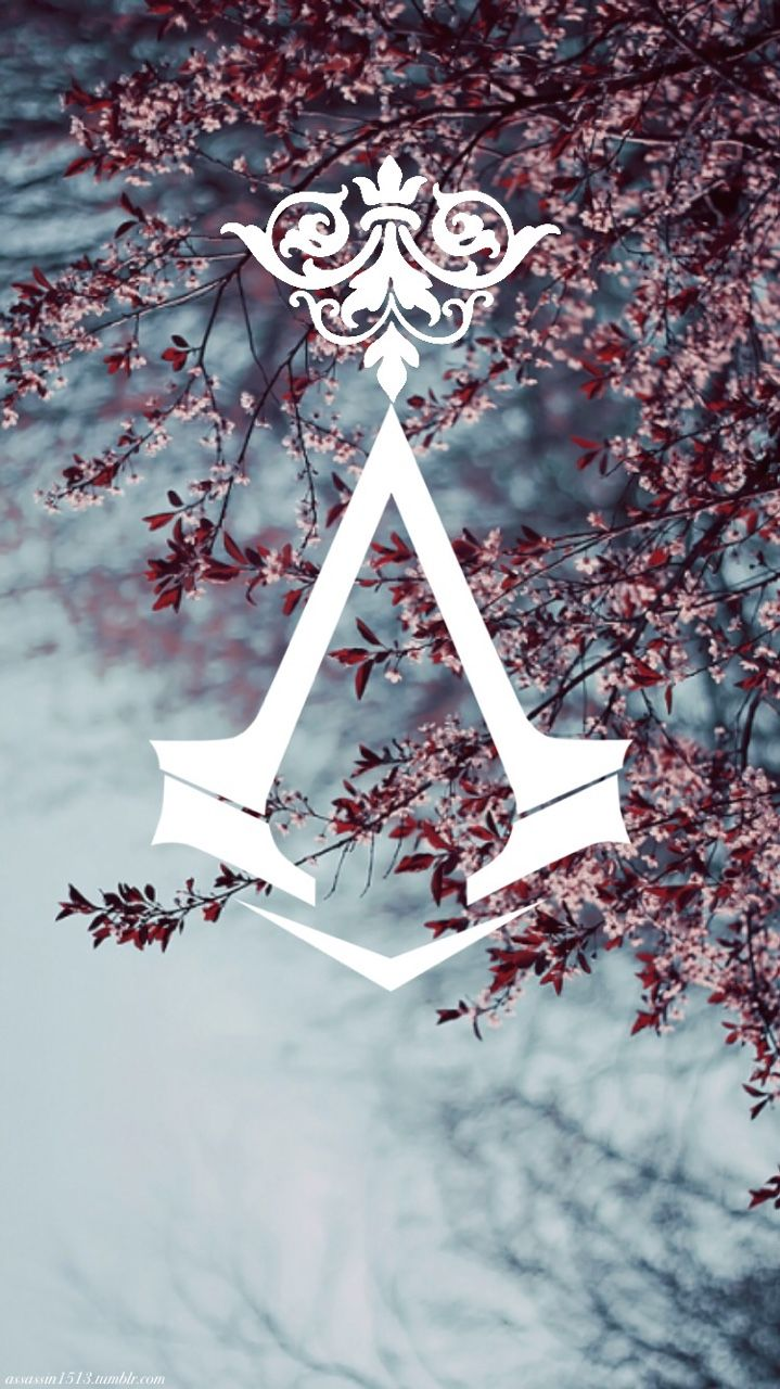Assassins Creed. Nothing is true. Everything is permitted