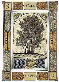 Hazel: As well as poetic skill, this Ogham card represents intuition, the power of divination leading straight to the source. Hazel twigs have traditionally always been used for divining because of their pliancy and affinity with water.