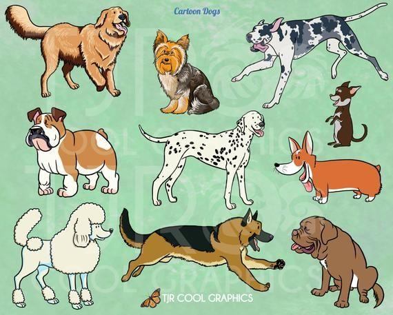 Four Great Danes Postcard Great Dane Puppy Great Dane Dogs