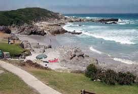 things to do in Hermanus - Google Search