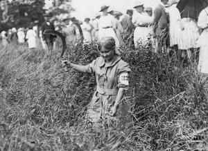 WWI, 25 July 1917; 'Miss Cramer, a female worker, trimming and cutting hedge during a competition held at the Whitehall Estate at Bishops Stortford' © IWM (Q 54083)