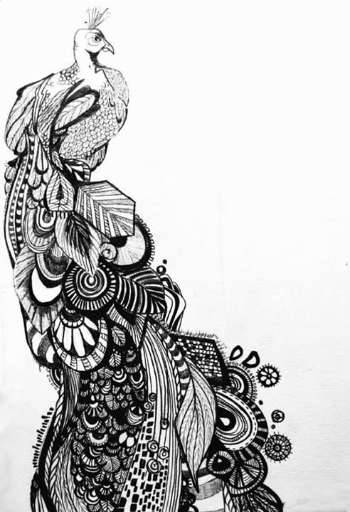 Line Drawing Of Peacock : Getting lost in the line drawing peacock art that