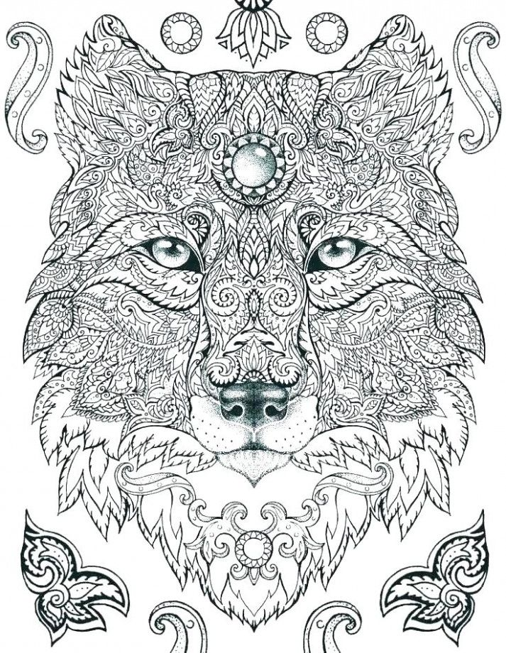 You Will Never Believe These Bizarre Truths Behind Hard Cute Animal Coloring Pages Coloring Animal Coloring Pages Lion Coloring Pages Mandala Coloring Pages
