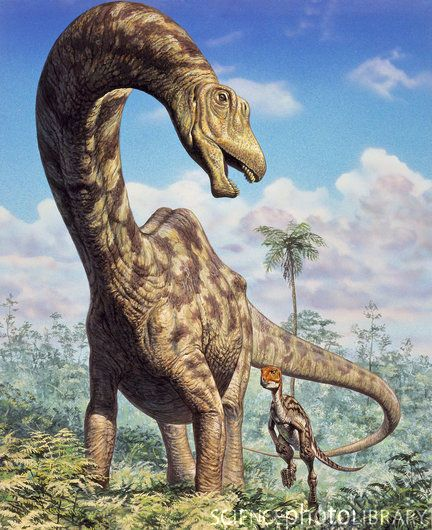 Supersaurus-Mark-Hallett1.jpg (432×530)
