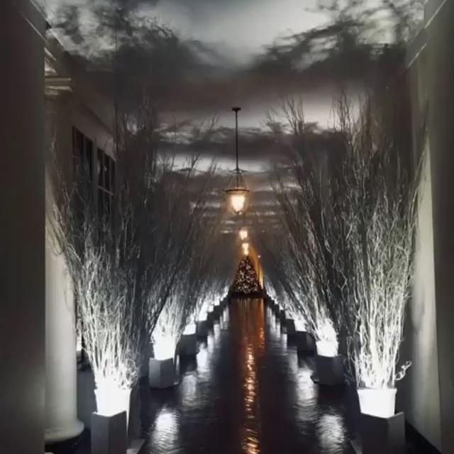 The White House Christmas Decorations put into motion by @eyephotophotography