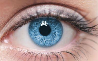 10 fatos interessantes sobre os cílios | Entre Coisas