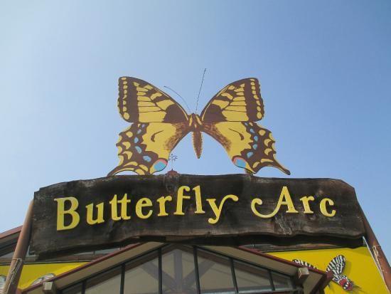 Case delle Farfalle Bosco delle Fate (butterfly house) - Montegrotto Terme