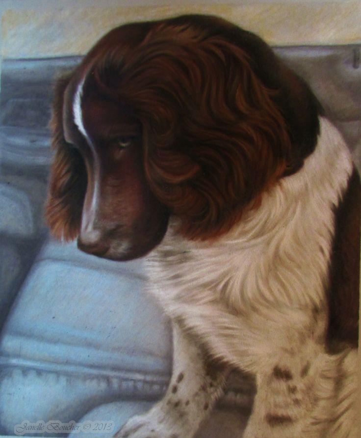 """Derwent Pastel on Velour 11x14 , """"Jessie"""""""
