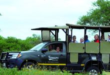 Kruger Park & The Kingdom Safari. For a holiday excursion that combines a visit to the Kruger National Park to see the Big Five with a cultural and historical tour of the surrounding kingdoms, this Kruger and Kingdoms tour cannot be beaten. There is even a boat cruise on Lake St Lucia to complete this multi-faceted holiday experience.