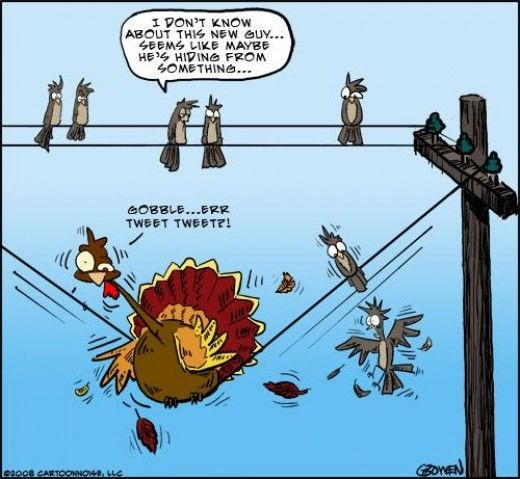 20 Super Funny Thanksgiving Jokes